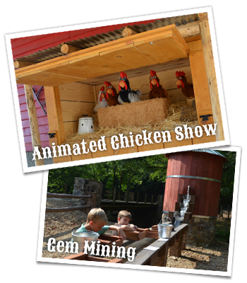 Animated Chicken Show and Gem Mining at Copper Creek Farm