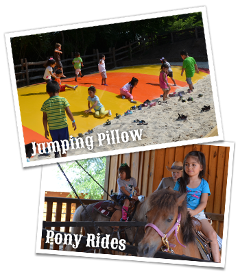 Jumping Pillow and Pony Ride